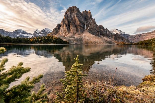 Montagne rocheuse avec reflet de pins sur le lac cerulean dans le parc provincial assiniboine