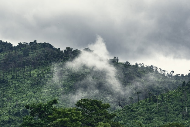 Montagne verte dans les nuages et le brouillard