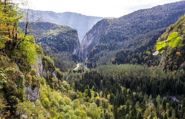 Montagnes en abkhazie. sur le chemin du lac ritsa (riza)