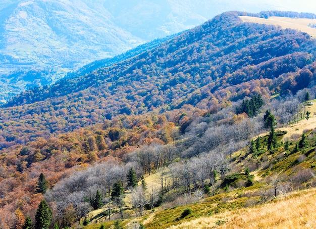 Montagnes d'automne avec des arbres dénudés à la lisière de la forêt en face (carpates, ukraine).