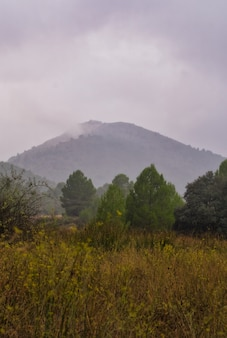 Montagnes en automne.
