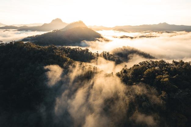 Montagnes et brouillard du matin dans la forêt tropicale d'hiver