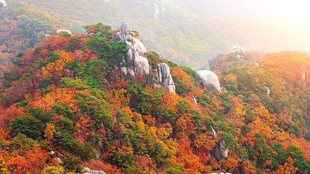 Montagnes de bukhansan en automne, séoul en corée du sud