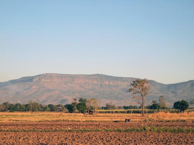 Montagnes et champs