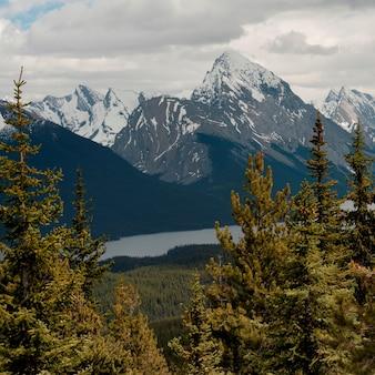 Montagnes enneigées, collines chauves, parc national jasper, alberta, canada
