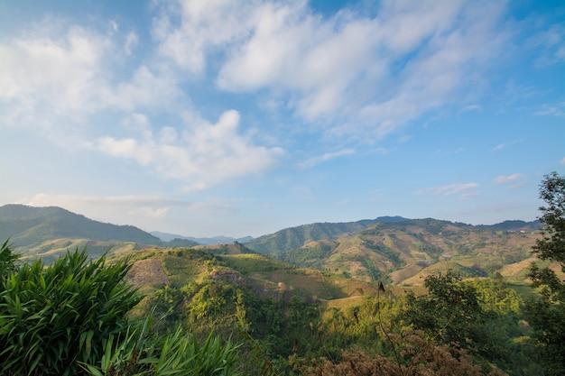Montagnes et forêt avec paysage de ciel nuageux