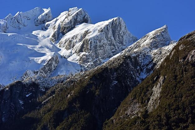 Montagnes et forêts pendant la journée
