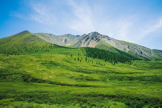 Montagnes géantes au-dessus de la vallée verte avec prairie et forêt en journée ensoleillée.