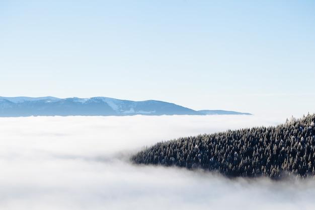 Montagnes d'hiver avec brouillard