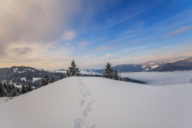 Montagnes d'hiver des carpates