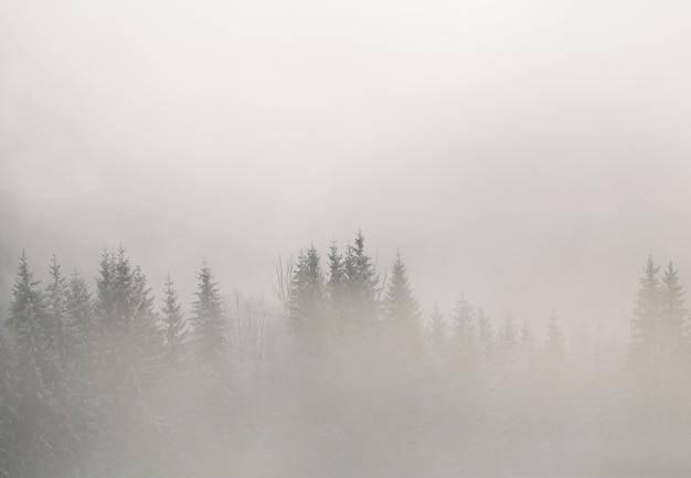 Montagnes d'hiver en europe