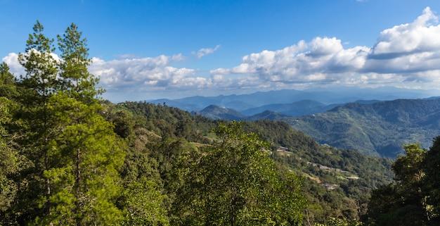Montagnes de la jungle dans le parc kinabalu. malaisie.