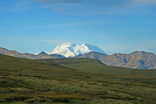 Montagnes sauvages de l'alaska de denali de la nature