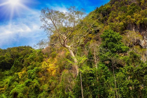 Montagnes et soleil en thaïlande