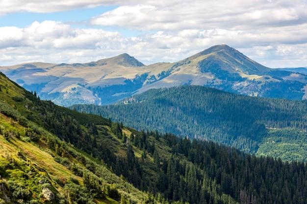 Montagnes et sommets verts des carpates