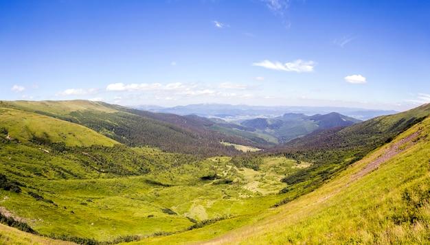 Montagnes vertes des carpates et sommets en journée ensoleillée d'été