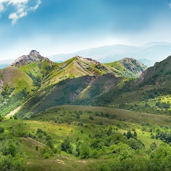 Montagnes vertes couvertes de forêt sur le ciel bleu
