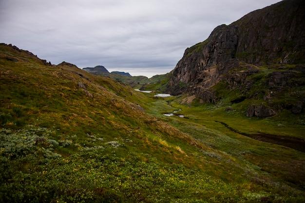 Montagnes vertes dans les fjords de narsaq, sud-ouest du groenland