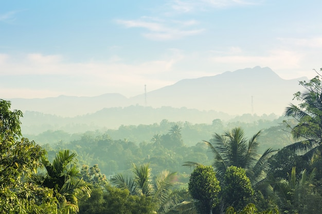 Montagnes vertes pittoresques et jungles, ceylan. paysage du sri lanka