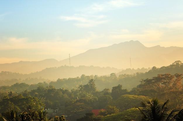 Montagnes vertes pittoresques et jungles, ceylan