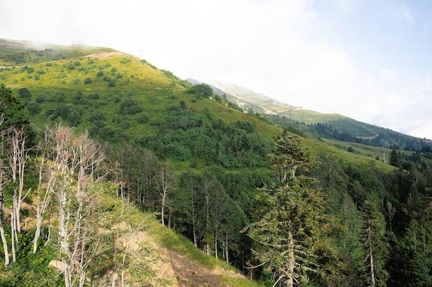 Montagnes vertes scéniques et beaux nuages de ciel pour le fond