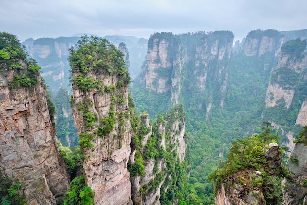 Montagnes de zhangjiajie chine