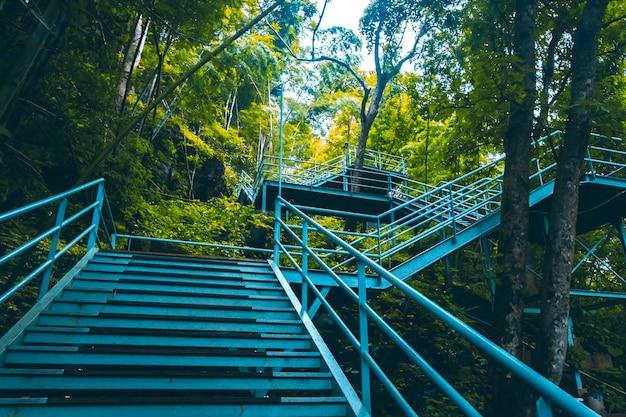 Monter les escaliers pendant la saison d'automne à l'extérieur. automne dans le parc. feuille jaune en automne. changement de saison . tourner et changer de mouvement sur fond d'idée de concept