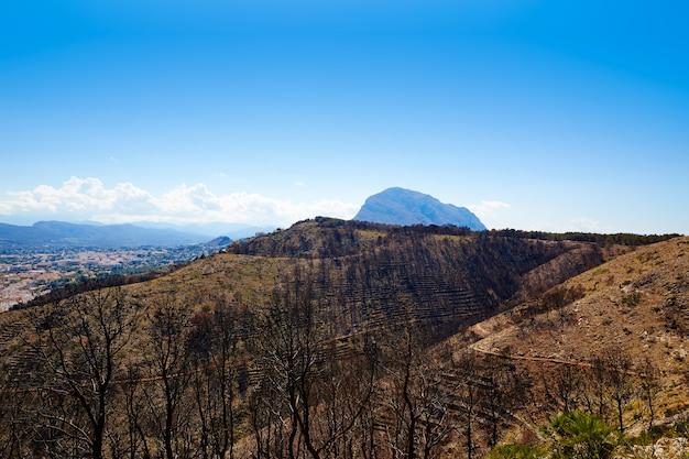 Montgo javea xabia a brûlé des arbres à feu à alicante