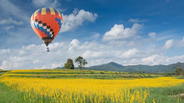 Montgolfière sur champ de fleurs jaunes
