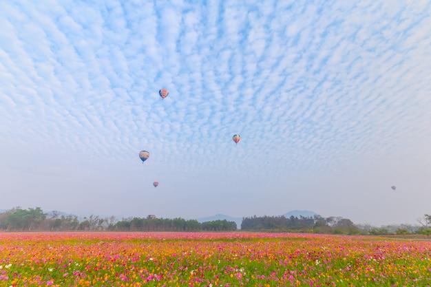Montgolfières survolant le champ de fleurs avec le lever du soleil à la province de chiang rai, thaïlande