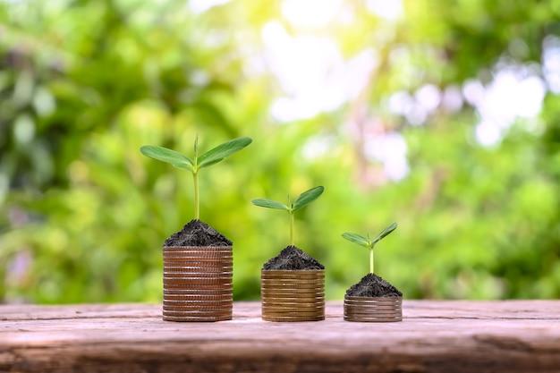Montrez votre développement financier et la croissance de votre entreprise avec des arbres qui poussent sur des pièces de monnaie.