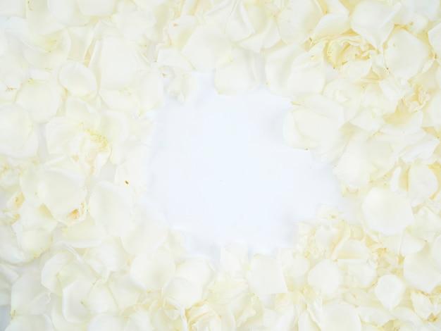 Monture en pétales de rose blanche