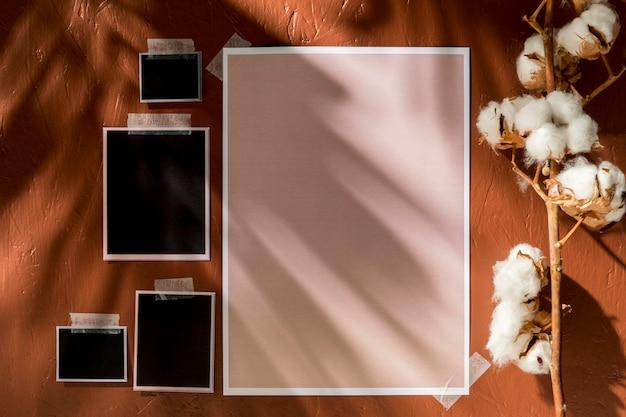 Moodboard d'automne avec fleur de coton