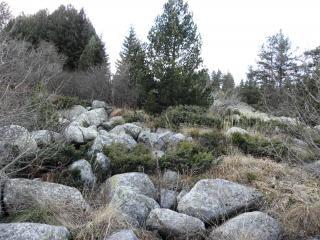 Moraines de la montagne vitosha, bulgarie
