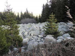Moraines de la montagne vitosha