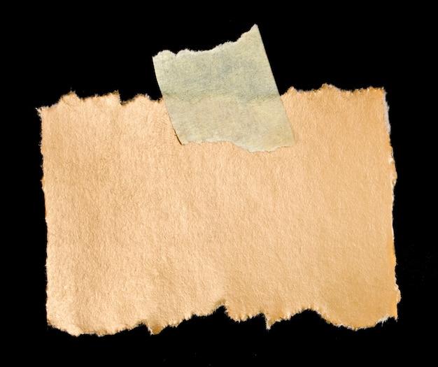 Morceau de feuille sur un blanc