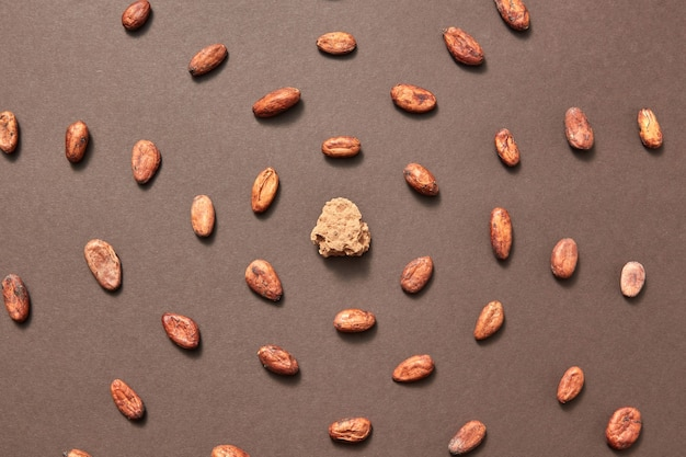Morceau de pâte de cacao naturel frais au milieu des fèves de cacao