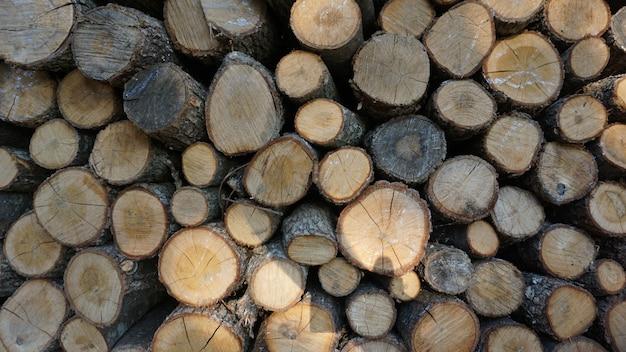 Morceaux de bois régulièrement déposés pour la cheminée