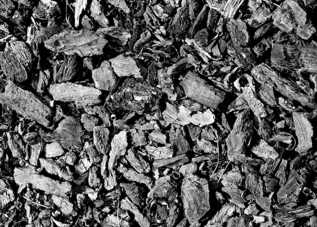Des morceaux de charbon de texture