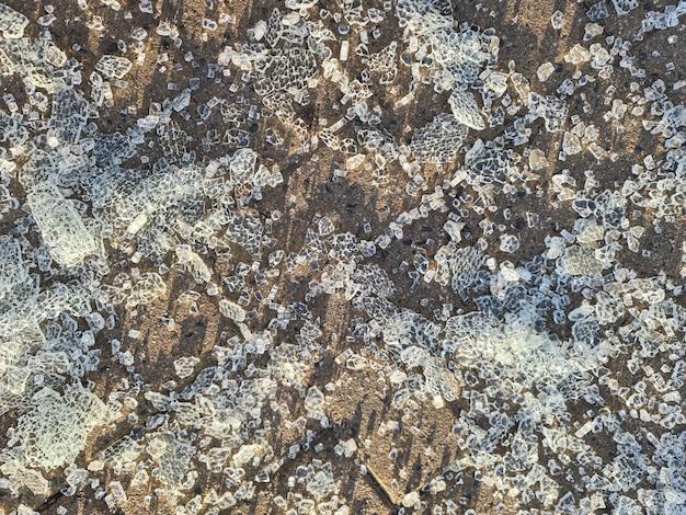 Morceaux de verre trempé cassé allongé sur des dalles de pavage arrière-plan libre