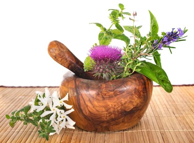 Mortier et plantes