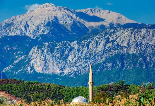 Mosquée dans un champ de maïs sur fond de montagnes. turquie, kirish.