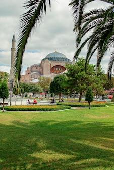 Mosquée sainte-sophie dans sa splendeur au loin. l'ombre d'un palmier sur l'herbe verte.