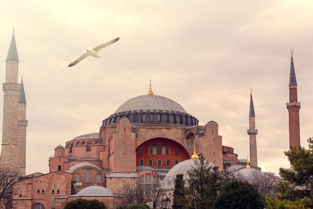 Mosquée sainte-sophie à istanbul pendant le coucher du soleil