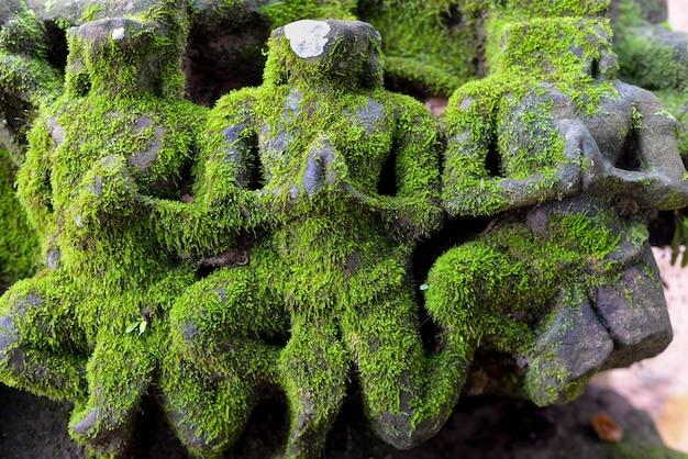 Mossy sculptures en pierre