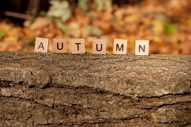 Le mot automne est écrit en lettres en bois sur un fond d'automne. concept d'automne et concept de calendrier. copier l'espace