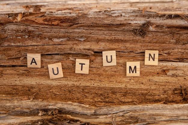 Le mot automne est écrit en lettres en bois sur un fond en bois. concept d'automne et concept de calendrier. copier l'espace