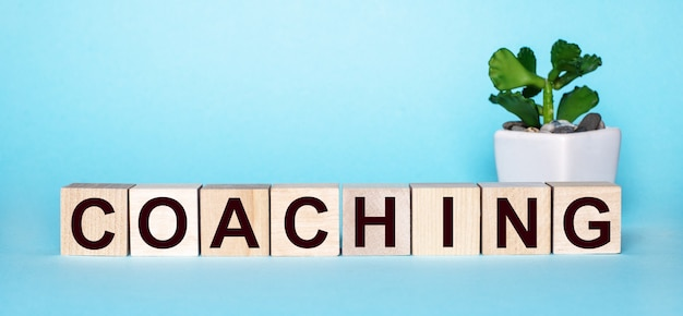 Le mot coaching est écrit sur des cubes en bois près d'une fleur dans un pot sur un bleu clair