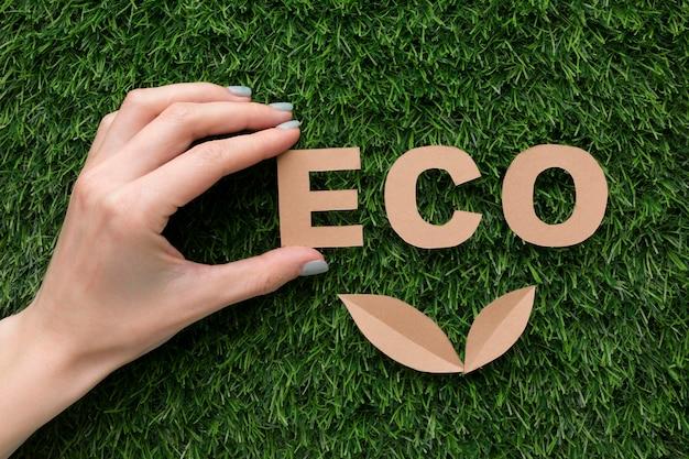 Mot eco sur l'herbe