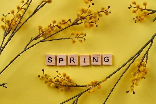Mot de printemps et branches de saule. fond jaune de tir vertical.